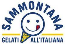 Sammontana / Le nostre recensioni sui prodotti di questo marchio