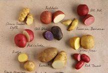 << Food Biodiversity >>