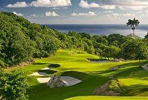 Golf / Love of my life.