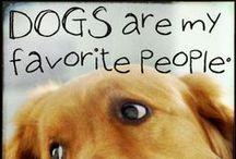 Dog love <3 <3 <3
