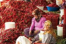 << Food in Turkey >> / Please visit GR2Food Archives @ http://gr2food.com/category/turkey/ to learn more about agriculture, farms, and food in Turkey. / by GR2Food Institute