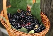 << Berries >> / Please visit the GR2Food Archives @ http://gr2food.com/tag/berries/ to learn more about health, international trade, marketing, and agricultural issues related to berries.