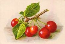 << Cherries >> / Please @GR2Food Archives, a curated article collection @ http://gr2food.com/tag/cherries/ to learn more about health, international trade, marketing, and agricultural issues related to cherries.