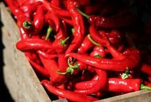 << Peppers * Chiles * Paprika >> / Please visit @GR2Food Archives @ http://gr2food.com/tag/peppers/ to browse our collection covering health and agricultural issues related to peppers