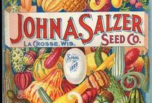 << Seeds >> / Seed catalogs, seed banks, seed prints and what seeds to plant / by GR2Food Institute