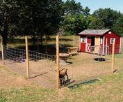 Goats: Shelters, Fencing, Feeders and Milk Stands / Great ideas for goat shelters, goat fencing, goat feeders and goat milk stands. Goat shelters. Goat shelters DIY. Goat shelter ideas. Goat shelter plans. Fencing for goats. Goat Fence DIY.  Goat feeder ideas. Goat feeder DIY. DIY goat milk stands.