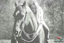 Horse Memes / Horses memes. Funny horse quotes. Horse humor.