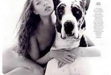Humans & Dogs / The beauty of humans & dogs coexisting