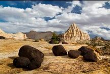 Capitol Reef National Park Adventures