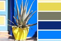 COLOR / kolory, barwy