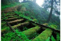 Verwunschen / verwunschene ,liebevoll angelegte Gärten märchenhaft aussehende Häuser  ruhe ausstrahlende Landschaften