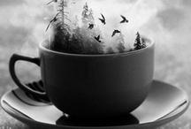 to the teashop / qualitea tea time / by Allie Dobberpuhl