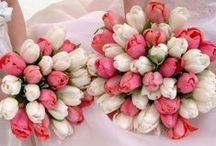 ♥ A Dream Wedding ♥ / ♥ ♥ ♥ / by Besna Goite