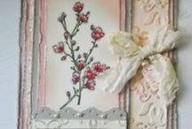 Stampin up florals 2 / by Cassandra Schepperle