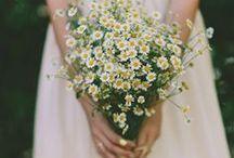 | Bouquets | / Fleurs, bouquets, plantes