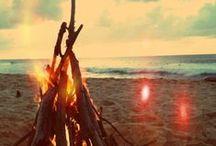 | Plages rêvées | / plage, mer, sable, océan, vacances, palmiers