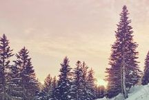 | Hiver cocooning | / L'hiver, cocooning, nature, photographie