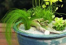 Gardening and Outdoor Living