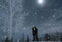 Winter beauty / by Kelly Carney