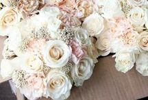 Ivory Wedding colours, ideas and inspiration