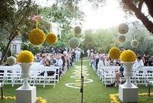Entrance Features /  ideas for wedding entrance features