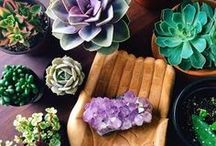 Crystals & Crystal Healing - Group Board / Crystals, Crystal Healing, Energy, Crystals for Chakras, Geodes, Tumbled Stones, Crystal Grids **If you would like to join as a contributor, please follow me (adelewalshblog) and send a message with your Pinterest username. Thanks!