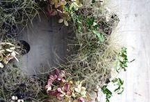 wreaths / kränze