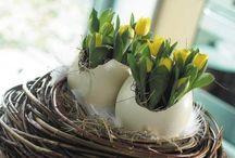 spring, easter & decor / natur & garten im frühling, frühlingsdeko für drinnen & draußen
