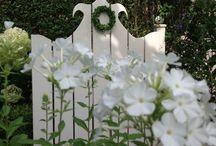 *garden: white garden / gärten in weiß/grün, besonders faszinierend in der dämmerung!