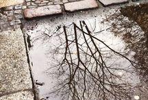 rain & puddles