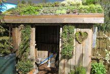 *garden: green roofs / dachbegrünung