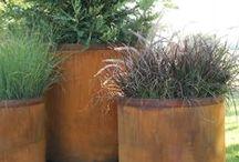 *garden: container & boxes / bepflanzte kübel und kästen
