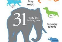 2014 Spanish/English Bilingual Calendar / Are you or your children learning Spanish? Here is a sneak peak at the 2014 Spanish/English Children's Bilingual Daily Calendar!  Teaches animals, colors, and numbers every day.
