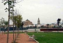 Córdoba hoy... / A veces algunas ciudades duermen durante mucho tiempo, a veces siglos. Pero un día despiertan y las gentes que las habitan, despiertan con ellas