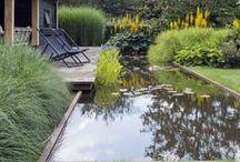 *garden: water features / gartenideen mit dem element wasser