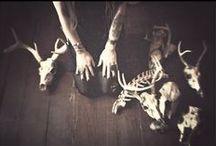 ♆ Occult † Spiritual † Witchcraft etc. ♆