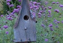 *garden: for the birds / nistkasten, futterhaus, vogelbad