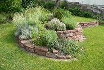 *garden: herb garden / frische kräuter in haus  & garten