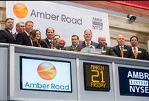 Amber Road Team