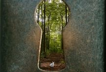 Beautiful images / Awesome images that caught my eye