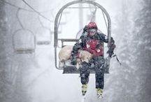 Skiing:  Ski Patrol / fresh tracks and emergency medical care / by Steve Grager †
