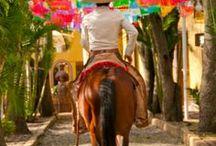 Trip for Mexico / Un tablero de los lugares más ideales para viajar por México CostaRealty - Más que una Inmobiliaria.  web: www.costarealty.com.mx