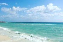 Playa del Carmen Beach Mexico / Conoce Playa del Carmen en Imágenes y visitalo pronto CostaRealty - Más que una Inmobiliaria. web: www.costarealty.com.mx