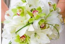 Wedding Bouquets/Bukiety ślubne