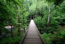 Explore North Carolina / Ideas, suggestions, and descriptions of great places to explore in North Carolina