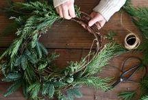 Holiday / Decor, gifting, cooking.