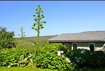 Camping Fleuri / L'Anse du Brick remporte le concours Camping Fleuri. A chaque saison sa couleur... L'Anse du Brick won the competition Camping Fleuri. Each season has its color ...