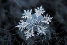 snowflakes / every shape size and every one different ...