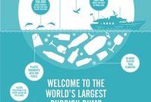 Zero Plastic Infographics