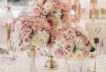 Powder pink/Pudrowy róż